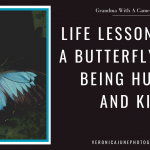 Ad image with butterfly and title about being kind