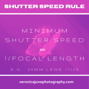 Butterfly Shutterspeed rule with pinks and purple background