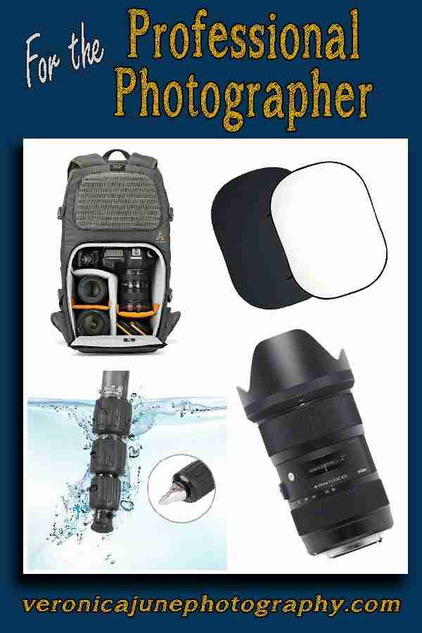 For the Pro Photographer