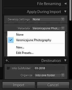 metadata upon import