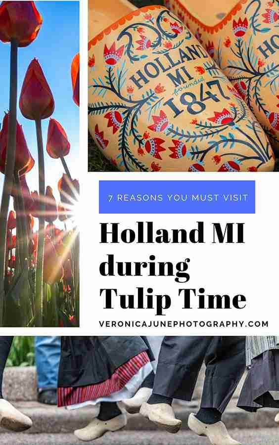 Tulip Time Pin Image