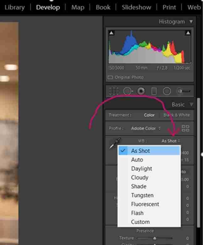 LR Screenshot showing preset menu for adjusting White Balance settings