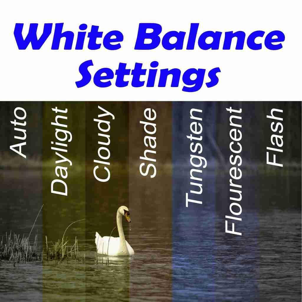 Chart showing various white balance setting adjustments
